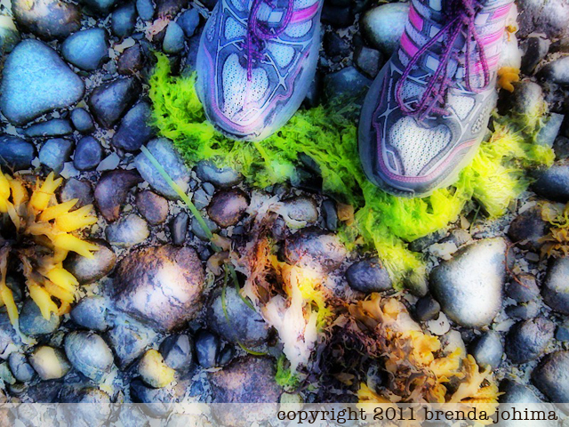 Jogging, Ships Point, Fanny Bay, Vancouver Island