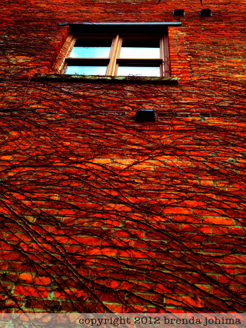 Red Brick Wall iPhone Art